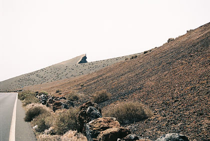 poetice natura-5.jpg