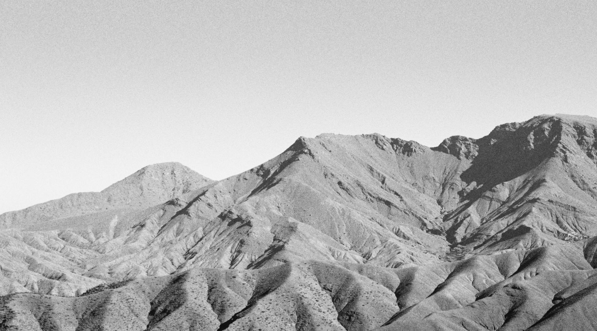 Poética natura - Misc Monochrome 10 - D