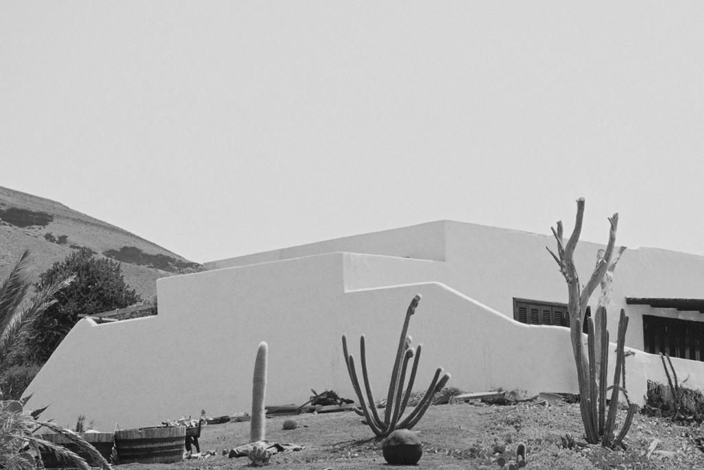 Poética natura - Misc Monochrome 6 - De