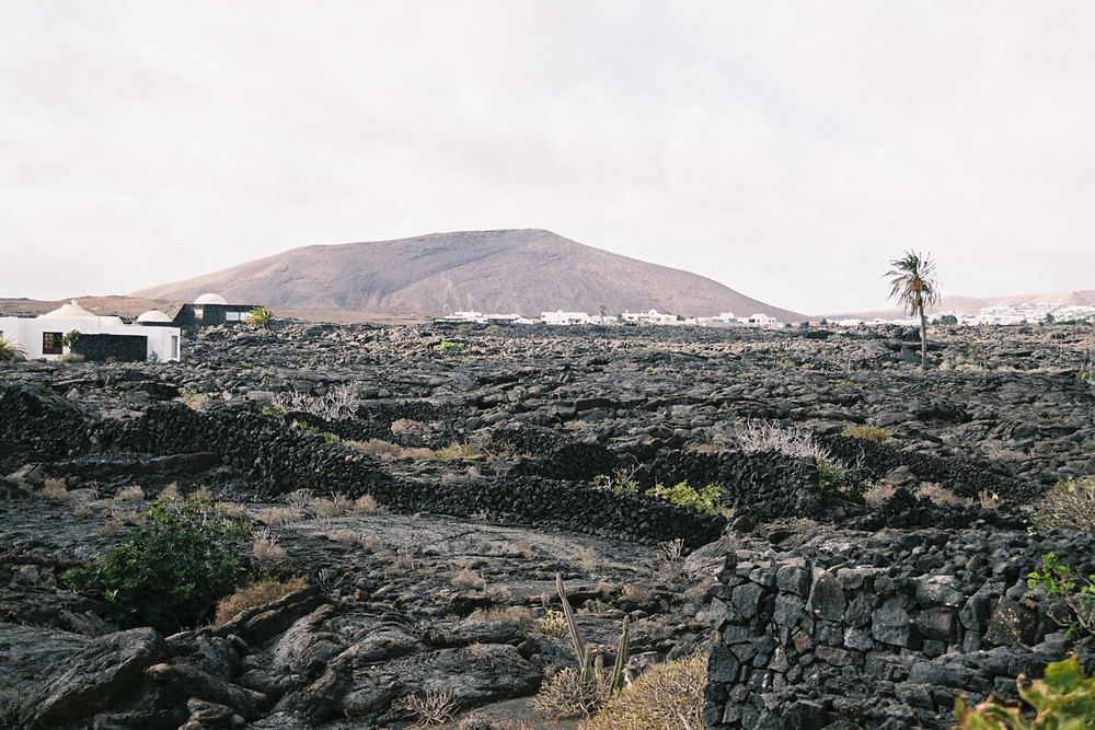 ​ ​​  ​Fundación César Manrique, Lanzarote Spain, captured by Studio Joko
