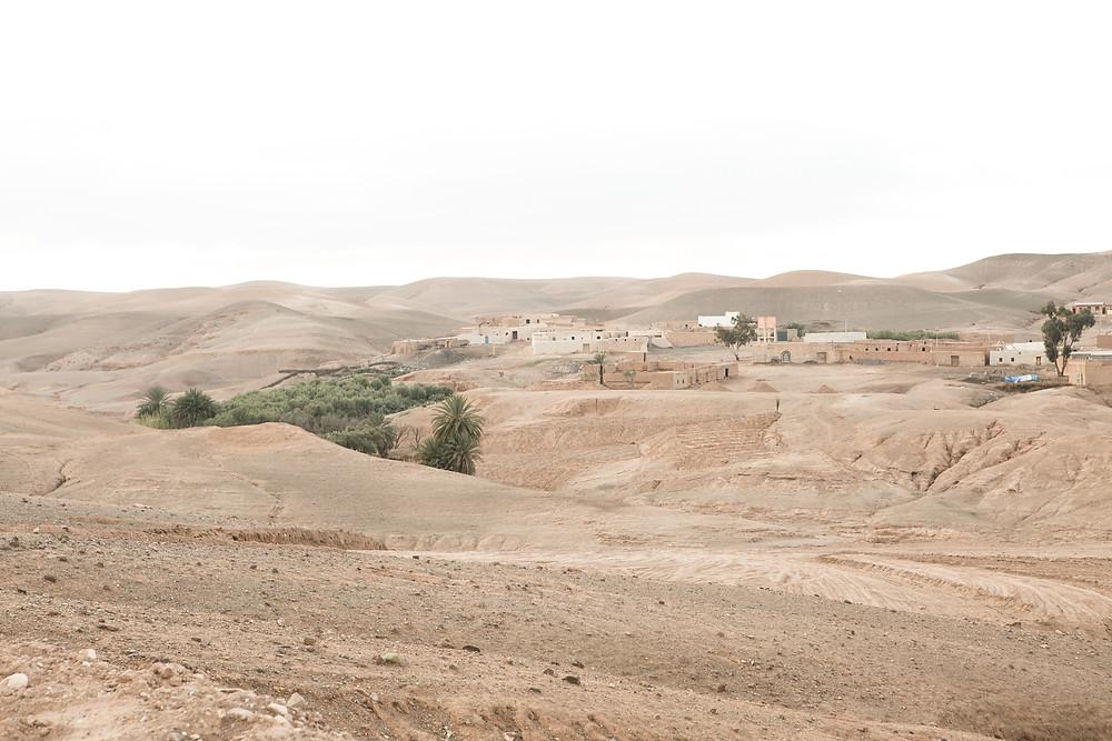 Joko visits La Pause in the Agafay desert, near Marrakech, Morocco