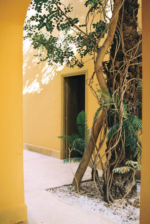 Jnane Tamsna, Marrakech, Morocco, captured by Studio Joko