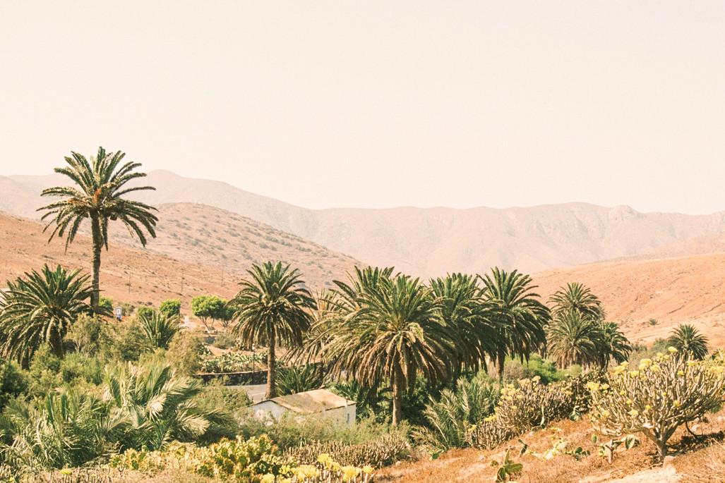 Travel fragments - Misc Fuerteventura 2.
