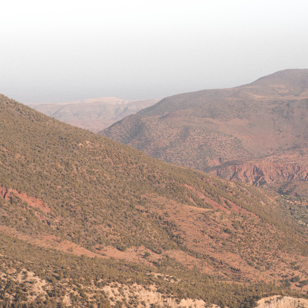 Poética Natura, Atlas Morocco - Debbie Trouerbach