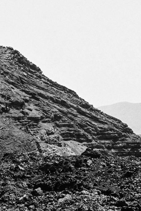 Poética natura - Misc Monochrome 13 - D