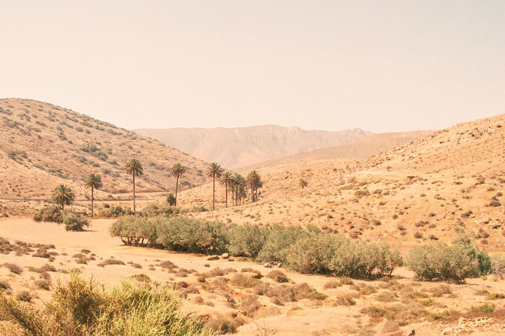 Travel fragments - Misc Fuerteventura 1.