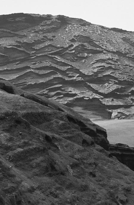 Poética natura - Misc Monochrome 12 - D