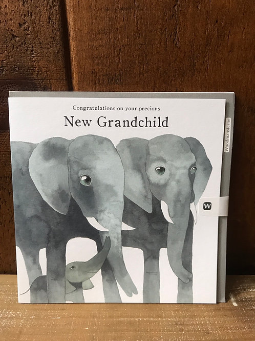 New Grandchild