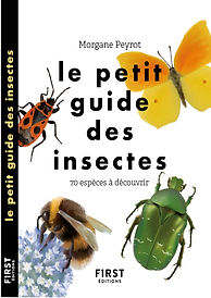 Couverture_Petit_guide_insectes_Firstedi