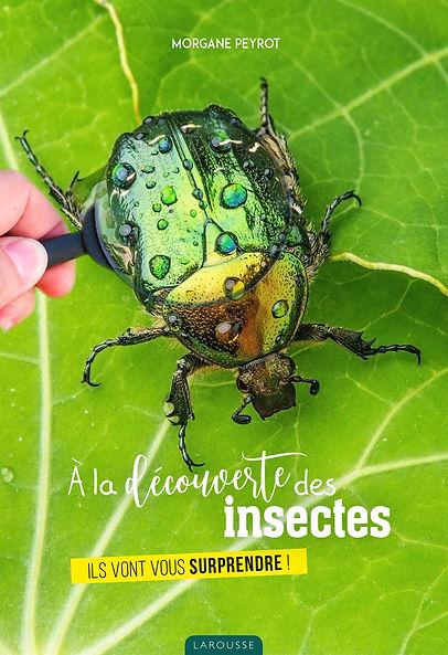 A la découuverte des insectes_MP_Couv.jp