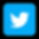 Twitter Bird Logo.png