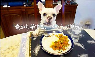 ペットの食卓.JPG