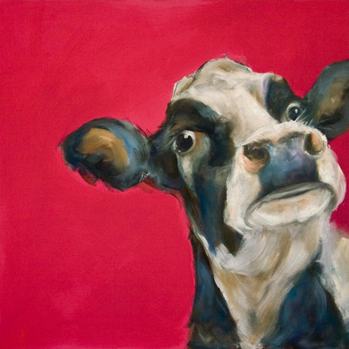 PLAYDAY COW PROJECT