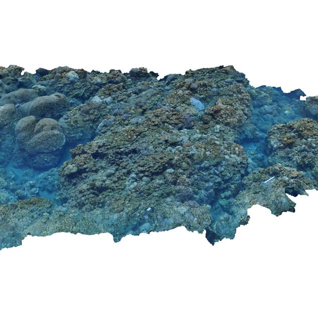 ID OCEAN JANVIER 2018