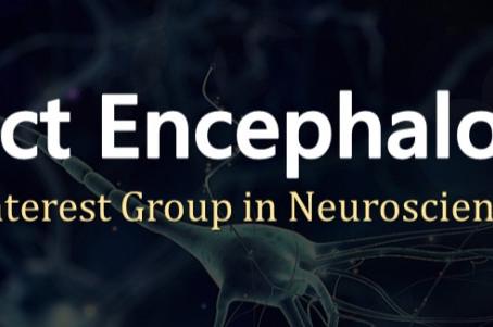 Project Encephalon: A Phe-neuro-menal Journey