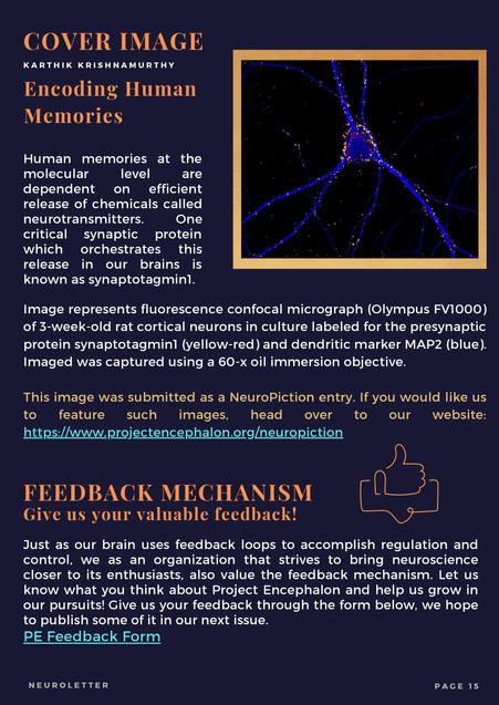 Neuroletter Aug 2021- 15.jpg