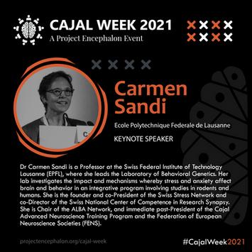 Dr Carmen Sandi