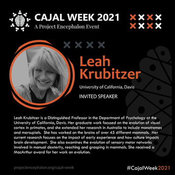 Dr. Leah Krubitzer
