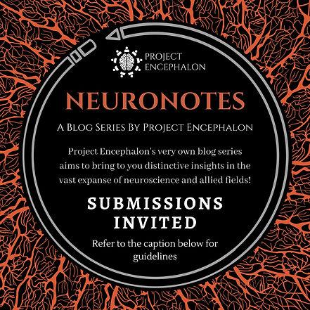NeuroNotes.jpeg