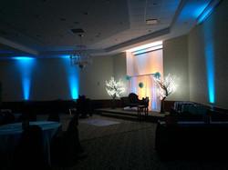LED trees 4.jpg
