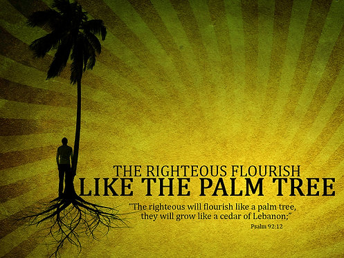The Righteous Flourish Like the Palm Tree (CD)