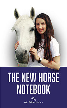 eqn_04_the new horse notebook@1x230x368.