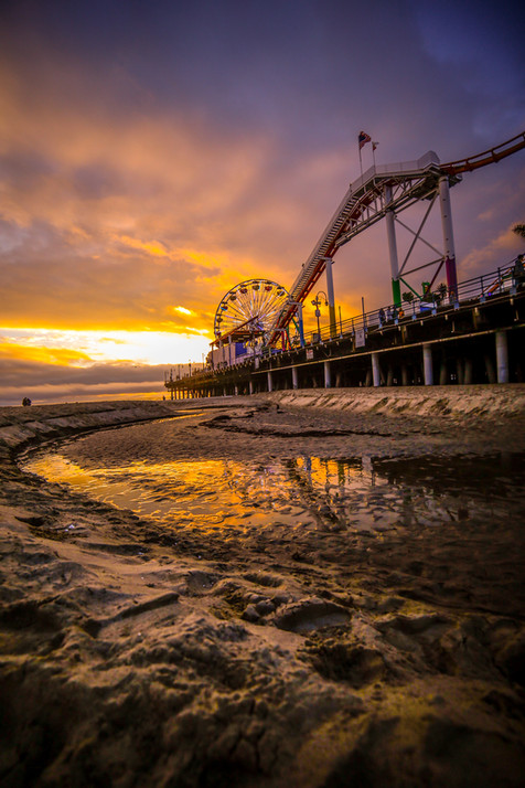Los Angeles Laker Sunset