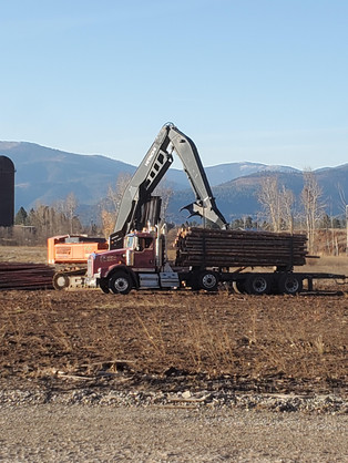 Logging loader and Log Truck