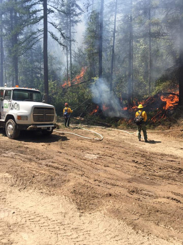 Forest Fire Fighting Support