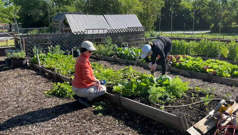 Celebration Garden Volunteers.jpg