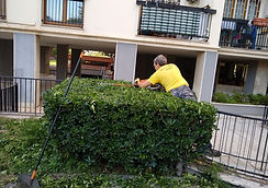 giardinaggio manutenzione aree verd