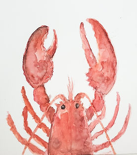 lobster watercolor.jpg