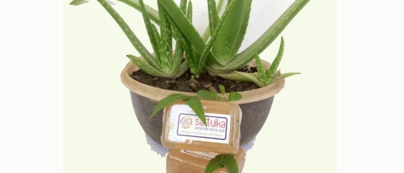 Aloe vera, Neem & Tulsi Soap (75 gms)