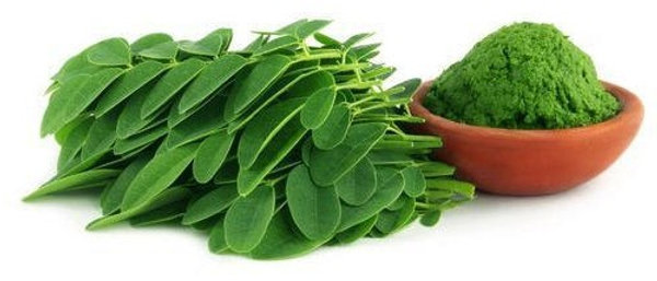 Moringa Leaf Powder in Mysore on Simple Soul - Same day delivery