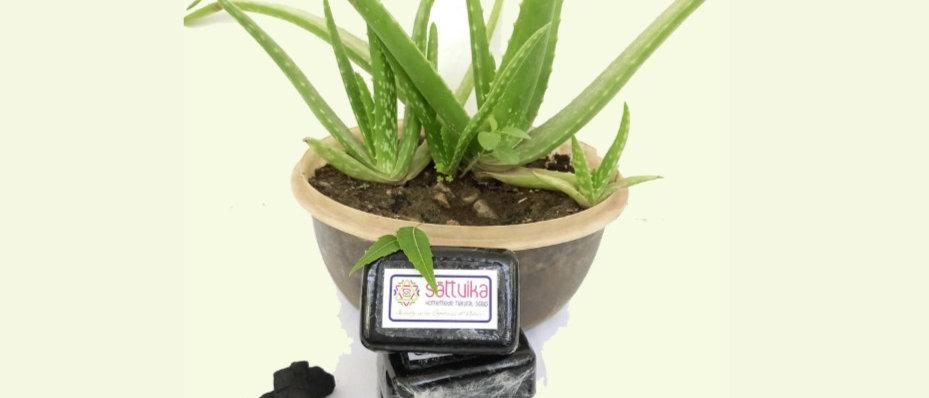 Coconut Milk, Aloe vera, Neem & Charcoal Soap (75 gms)