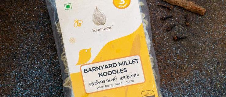 Barnyard Millet Noodles