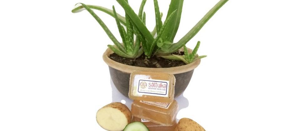 Aloe vera, Cucumber & Potato Soap (75 gms)