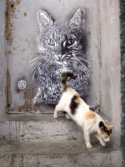 Œuvre de Street Art
