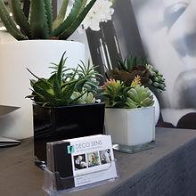 Succulents cactus et petites plantes artificielles - deco sens