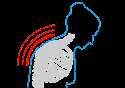 Ostéoporose - Remise en forme séniors | MedXcore