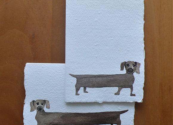 A6 CARD DOG