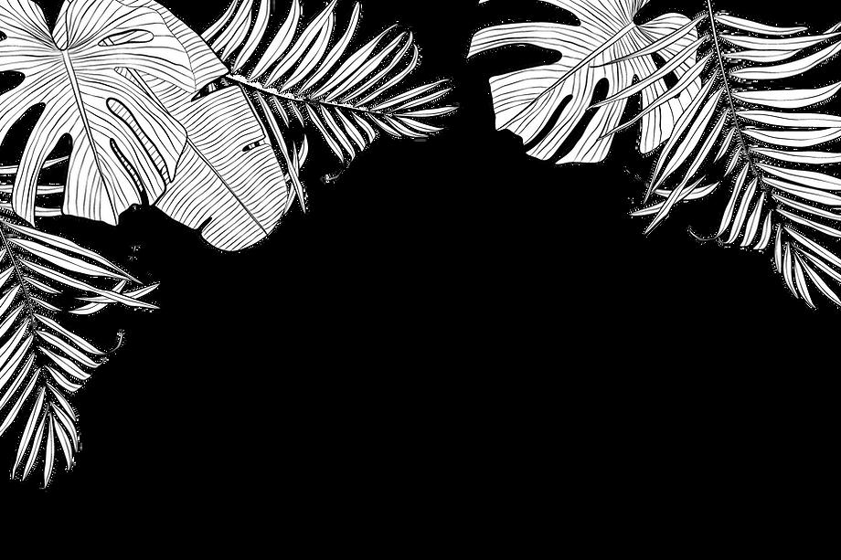 Feuilles tropicales illustrant la collection de pochettes et sacs bio tropicaux