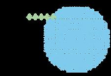 bactanalyse-08.png