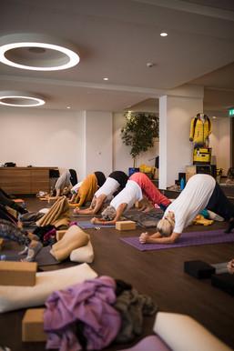 yogameet-ginaheld-770A9992.jpg