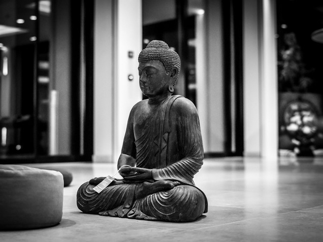 Yoga meets Weggis.jpg
