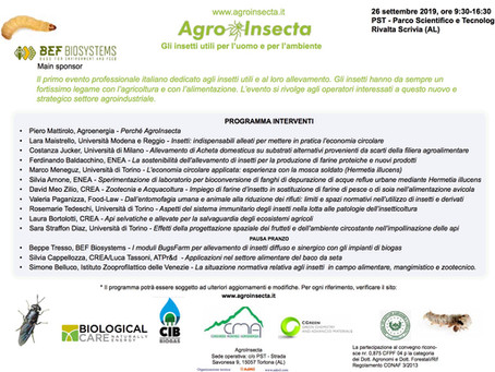 Agroinsecta
