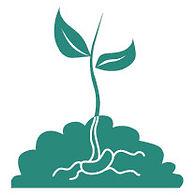 fertilizzanti_Tavola disegno 1.jpg