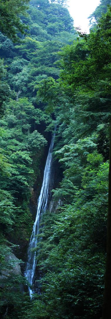 滝スーミー