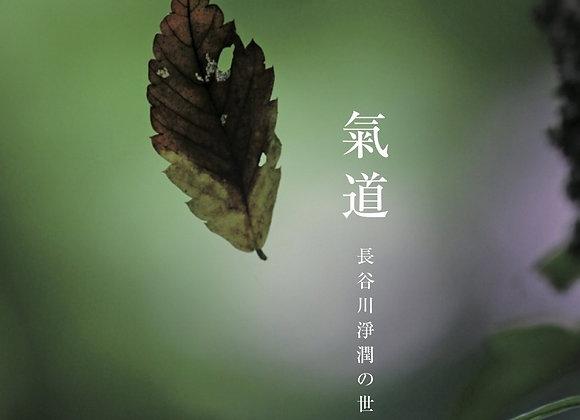 写真詩集「自然に生くる道〜氣道 〜長谷川淨潤の世界」