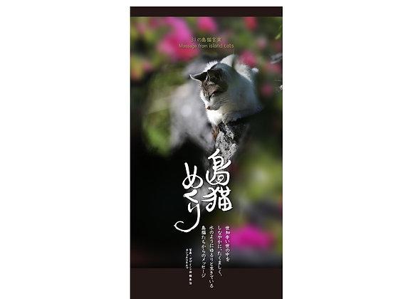 「島猫めくり」31の島猫言葉に癒される「万年日めくりカレンダー」